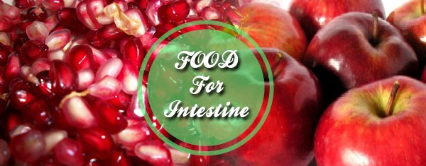 Food for Intestine